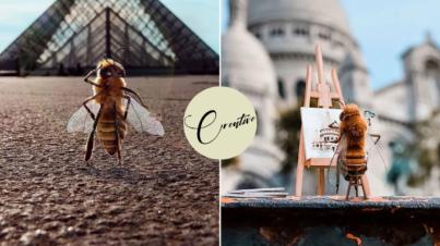 Bee instagram