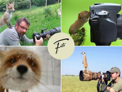 Fotografia naturalista
